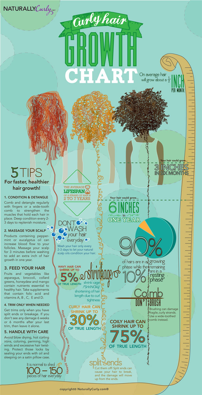Curly Hair Guide Infographic Growth Chart Hair Romance